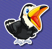 Toucan Foto de Stock
