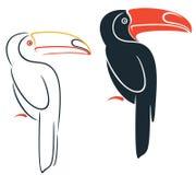 toucan Стоковые Фотографии RF