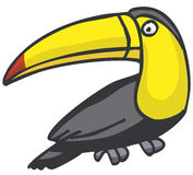 Toucan vector illustration
