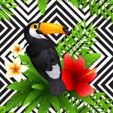 与toucan和木槿的传染媒介热带样式 库存照片