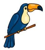 Toucan Photo libre de droits
