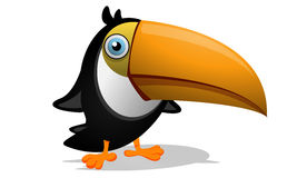 Toucan Illustrazione di Stock