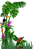 Toucan Background. Tropical background with flowers and a toucan Stock Photography