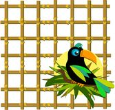 Toucan with Bamboo Grid Royalty Free Stock Photo