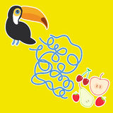 Toucan Bird and the apple pear strawberry cherry on yellow background  labyrinth game for Preschool Children. Vector Royalty Free Stock Photo