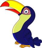 Toucan bird cartoon Stock Photography