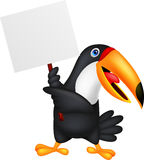 Toucan bird cartoon with blank sign Stock Image