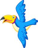 Toucan bird cartoon flying Stock Photo