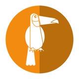 Toucan bird exotic fauna shadow. Vector illustration eps 10 Stock Photo