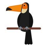 Toucan bird exotic fauna. Vector illustration eps 10 Royalty Free Stock Image