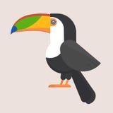Toucan Bird Flat Icon Royalty Free Stock Photos
