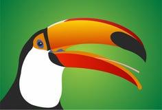 Toucan. Bird on green background stock illustration