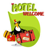 Toucan bird greets guests. Toucan bird glad to see guests in the hotel Stock Photo
