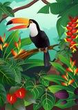 Toucan bird illustration Royalty Free Stock Photo