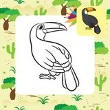 Toucan bird illustration. Coloring page. Vector Royalty Free Stock Images