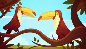Toucan Birds Background Poster Stock Photos