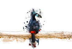 Toucan on the branch, abstract animal concept. Can be used for wallpaper, canvas print, decoration, banner, t-shirt graphic, advertising Stock Illustration