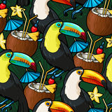 Toucan and cocktail Stock Image