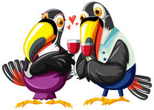 Toucan couples drinking wine Royalty Free Stock Images