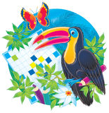 Toucan and crossword Royalty Free Stock Photography