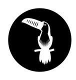 Toucan exotic bird icon Stock Photography