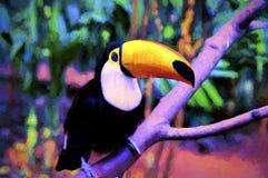 toucan fågel Fotografering för Bildbyråer