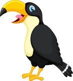 toucan fågeltecknad film Royaltyfri Fotografi