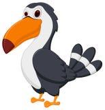 toucan fågeltecknad film vektor illustrationer