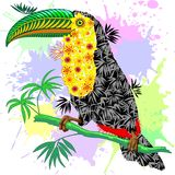 Toucan Floral Pattern Wild Bird from Amazon Rainforest Royalty Free Stock Images