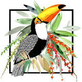 Toucan Fondo esotico della natura Pianta tropicale royalty illustrazione gratis