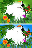 Toucan Frame. Tropical background with flowers and a toucan in two alternative colors royalty free illustration