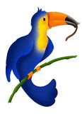 Toucan greedy. Color illustration of a colorful toucan busy eating a delicious lunch Royalty Free Stock Photography