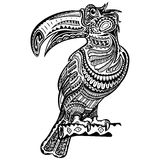 Toucan. Hand drawn toucan zentangle style for coloring book, shirt design or tattoo. Boho style. Black and white Royalty Free Stock Photography