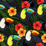Toucan and hibiscus seamless Royalty Free Stock Images