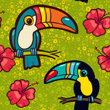 Toucan and Hibiscus. Tropical Green seamless pattern. Stock Image