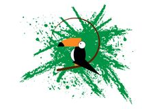 Toucan icon. Cartoon illustration of toucan vector icon for web. Toucan flat style vector logo template green splatter background Royalty Free Stock Image