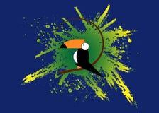 Toucan icon. Cartoon illustration of toucan vector icon for web. Toucan flat style vector logo template green splatter background Royalty Free Stock Photos