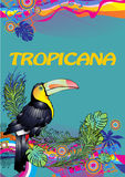Toucan. Illustration of toucan in colorful background Royalty Free Stock Image