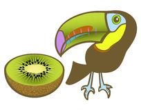Toucan and kiwi Royalty Free Stock Images