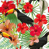 Toucan leaves and flowers seamless pattern white background Stock Images