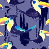 Toucan mönstrar Tropisk sömlös fågeltapet Arkivbilder