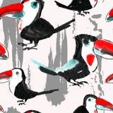 Toucan mönstrar Tropisk sömlös fågeltapet Royaltyfria Foton