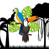 Toucan and macaw birds. Toucan and macaw with green leaves over jungle background. brazilian culture design. vector illustration Royalty Free Stock Images