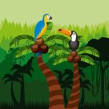 Toucan and macaw birds. Over jungle background. colorful design. vector illustration Stock Photo