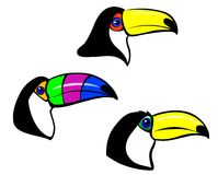 Toucan mascot Royalty Free Stock Photo