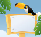 Toucan Message Royalty Free Stock Photos