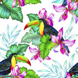 Toucan and orchids, tropical seamless patern. Bouquet of exotic flower with a small colorful tropical bird. Amazing detailed botanical illustration. Hyper real Stock Images