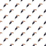 Toucan pattern seamless royalty free illustration