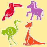Toucan, pony, ostrich and kangaroo Stock Photography