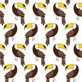 Toucan seamless pattern. Exotic pattern Royalty Free Stock Image